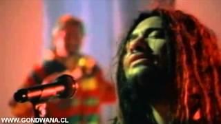 Armonía de amor - Gondwana [Video Oficial]