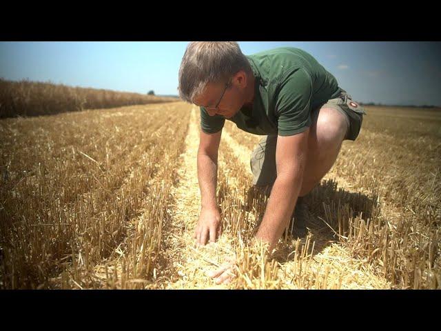 John Deere T550i — Een loonwerker op jacht naar hectares