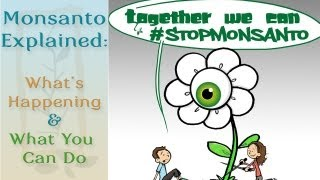 Monsanto Explained: What's Happening & How You Can Stop It