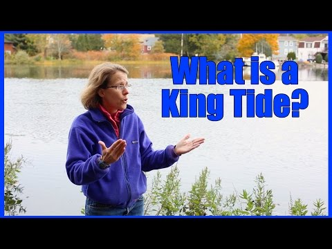 What is a King Tide?
