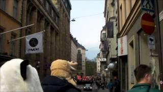 Демонстрация Стокгольм 1 мая 2015(, 2015-05-01T16:56:55.000Z)
