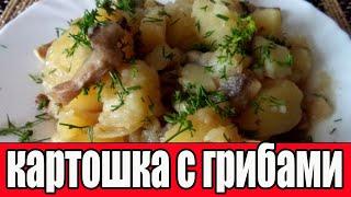 ТУШЕНАЯ КАРТОШКА С ГРИБАМИ Как тушить картошку