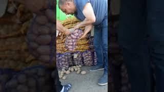 Как на бельцком овощном рынке обманывают покупателей