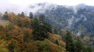 Smoky Mountains TN, Gatlinburg TN, Charokee NC and Helen GA - October 2014