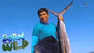 Born to be Wild: Bycatch fishing