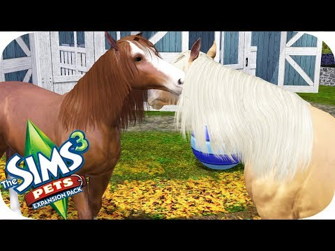 The Sims 3   Pets   Part 6   TRYING FOR A FOAL?!?