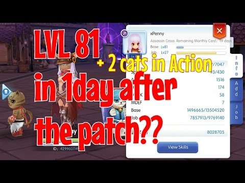 Ragnarok Mobile: Level up faster with these simple tips!