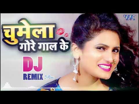 Antra Singh Priyanka   इस साल का सबसे हिट Dj Song    Chumela Gore Gaal Ke   DjRemix