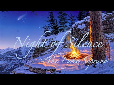 Night of Silence ~ Female Cover