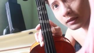 Học đàn violon, mua ,chọn ,các loại violon ,giới thiệu violon