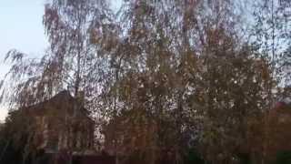 Продаю Уникальное VIP Домовладение 506м2 в Ростове-на-Дону!(, 2015-04-11T18:59:26.000Z)