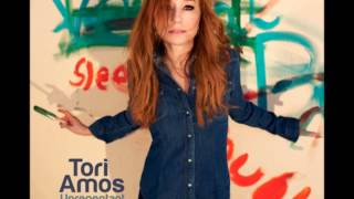 Watch Tori Amos Wild Way video