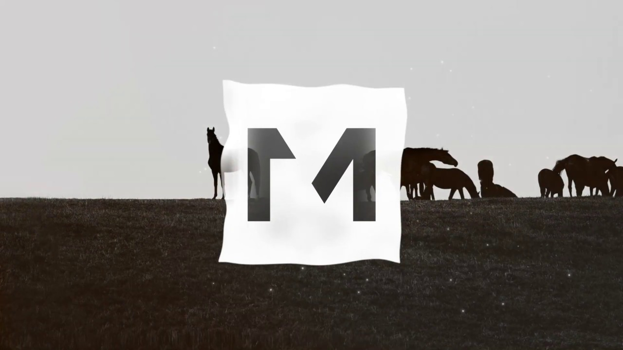 Download MILES - WHAT IN TARNATION