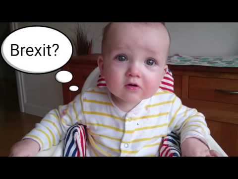 #askSam EU Referendum