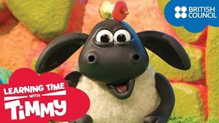Healthy Snacks | Learning Time with Timmy | Learning Fun Cartoons for Kids | Full Episodes