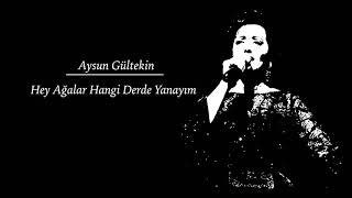 Aysun Gültekin - Hey Ağalar Hangi Derde Yanayım • Türkü Dinle