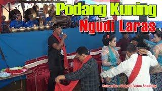 Download Video GENDING TAYUB PODANG KUNING - Langen Tayub Trenggalek MP3 3GP MP4