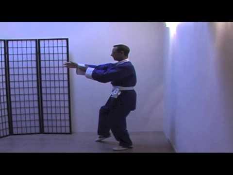 Wu Dang Tai Chi Chuan short hand form for beginners. From Golden Rooster Nei Jia