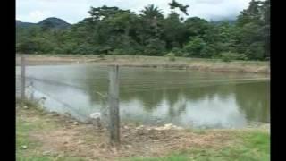Calidad de Aguas en Piscicultura