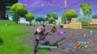 Pure gold bug-Fortnite
