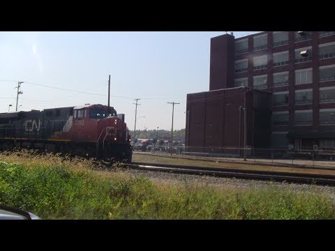 cn intermodal container train