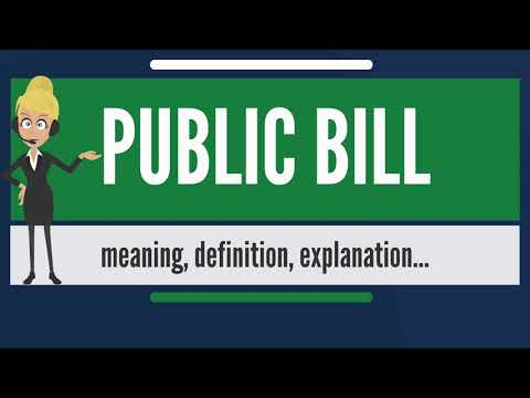What is PUBLIC BILL? What does PUBLIC BILL mean? PUBLIC BILL meaning, definition & explanation