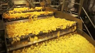 Viskas prasideda nuo bulvių!