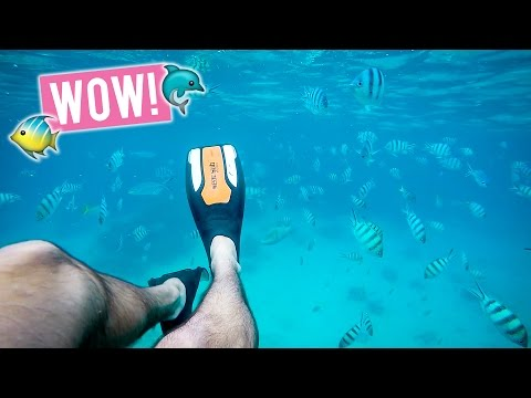 Is this the Best Diving Spot in the World? | Soneva Kiri Thailand