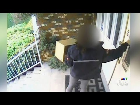 Alleged theft by Canada Post worker prompts investigation