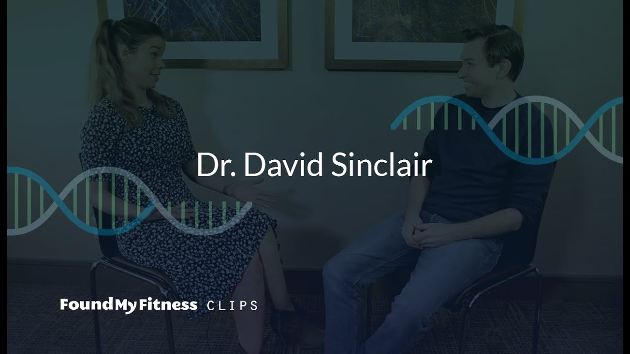 Resveratrol Supplementation And Dosage David Sinclair S Personal Experience Youtube