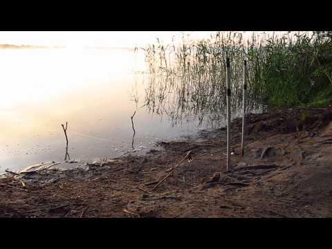 Ловля Карася на Резинку весной.О Рыбалке Всерьез видео.