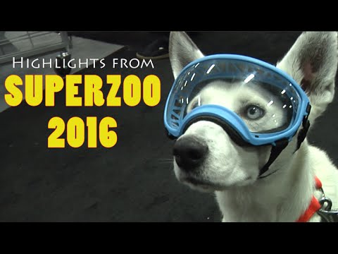 fun-finds-at-the-2016-superzoo-pet-expo-part-1