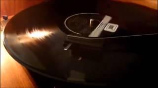 HER ŞEY SENİNLE GÜZEL / ZERRİN ÖZER 1981 / 33 rpm ( Orijinal plak kayıt )