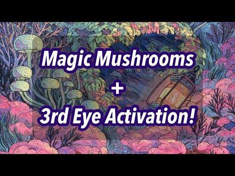 MAGIC MUSHROOMS + 3rd EYE ACTIVATION!🍄✨👁