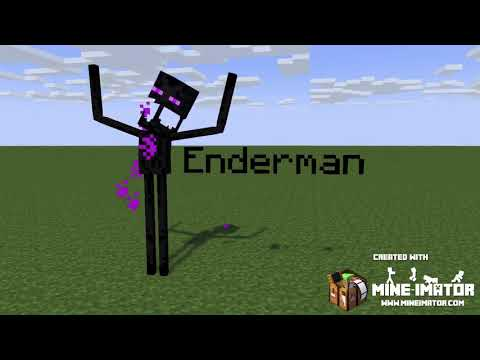Anomaly 071 Vs Enderman