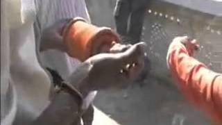 Gujaraat 2002 Massacre of Muslims by Hindu terrorists