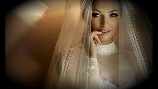 Ты Красивая Невеста, Прекрасная Песня о Любви,  Александр Казак  -  ПОСЛУШАЙТЕ!!!