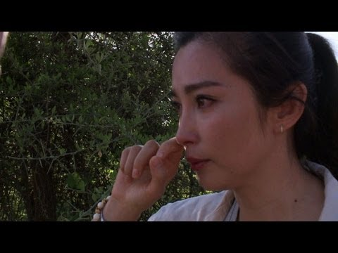 Chinese actress Li Bingbing highlights the illegal ivory trade