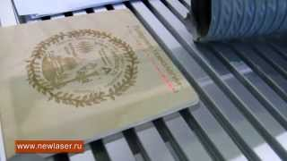 Лазерная гравировка фанеры www.newlaser.ru(, 2011-05-05T09:15:43.000Z)