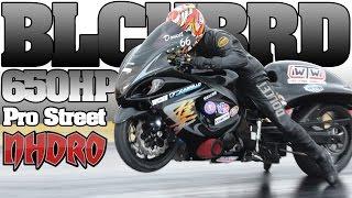 BLACKBIRD turbo Hayabusa 6 second Pro Street bike, Justin Doucet 2015