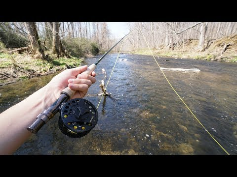 My First Time FLY Fishing!! (Was Not Expecting This..)
