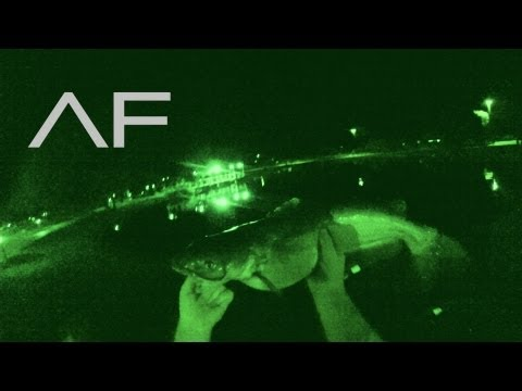 Night Fishing For Monster Catfish With Night Vision : Episode 1