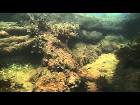 Scuba Diving In Arabian Sea GOA