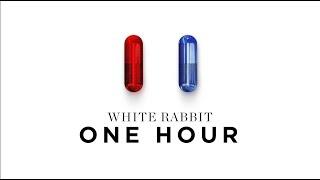 1 Hour Matrix 4 Resurrections Trailer Music | White Rabbit Official