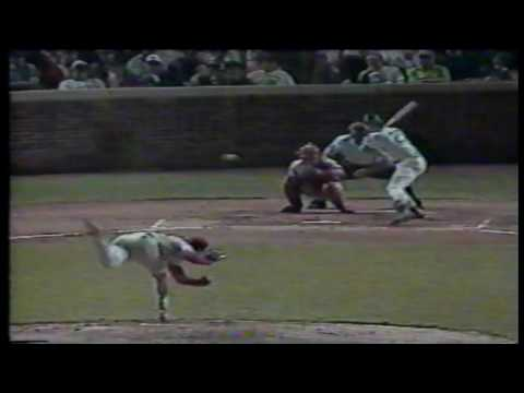 Phillies at Cubs 04 20 1992 Gary Scott 13 pitches grand slam