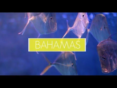 Bahamas Travel Diary⼁Priscilla Lam