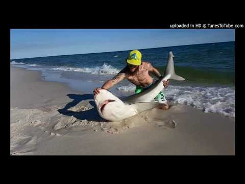 Fishing Problems  Adam J Freestyle Fisherman