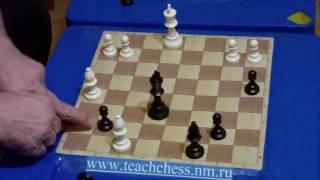 Фора 41. Урок 3. Как научить детей играть в шахматы