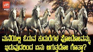 ಮನೆಯಲ್ಲಿ ಓಡುವ ಕುದುರೆಗಳ ಫೋಟೋವನ್ನು ಇಡುವುದರಿಂದ ಏನು ಆಗುತ್ತದೋ ಗೊತ್ತಾ? | Running Horse Photo Vastu Kannada