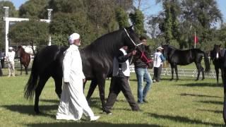 Concours SOREC Meknes 2013